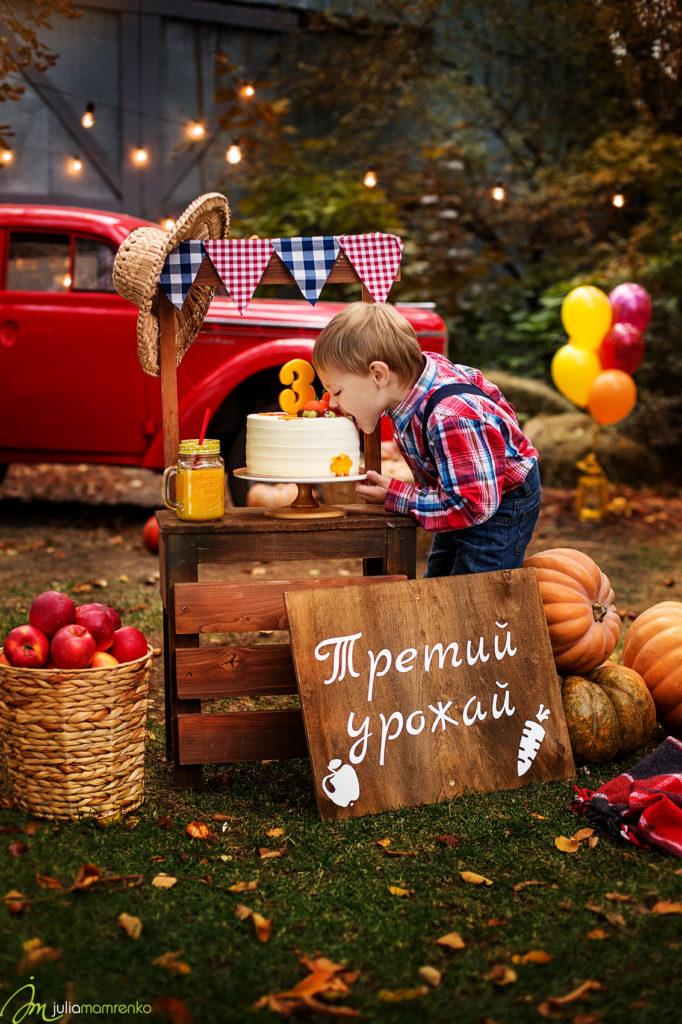cakesmash_rafinad_Andreyka_5