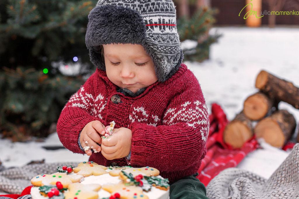 cakesmash_rafinad_Mark_Christmas_4